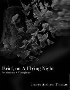 Brief on a Flying Night Cover